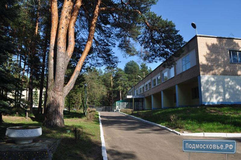 lesnaya-opushka_1.jpg